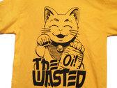 Yellow Cat photo