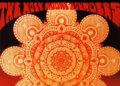 Holy Modal Rounders image
