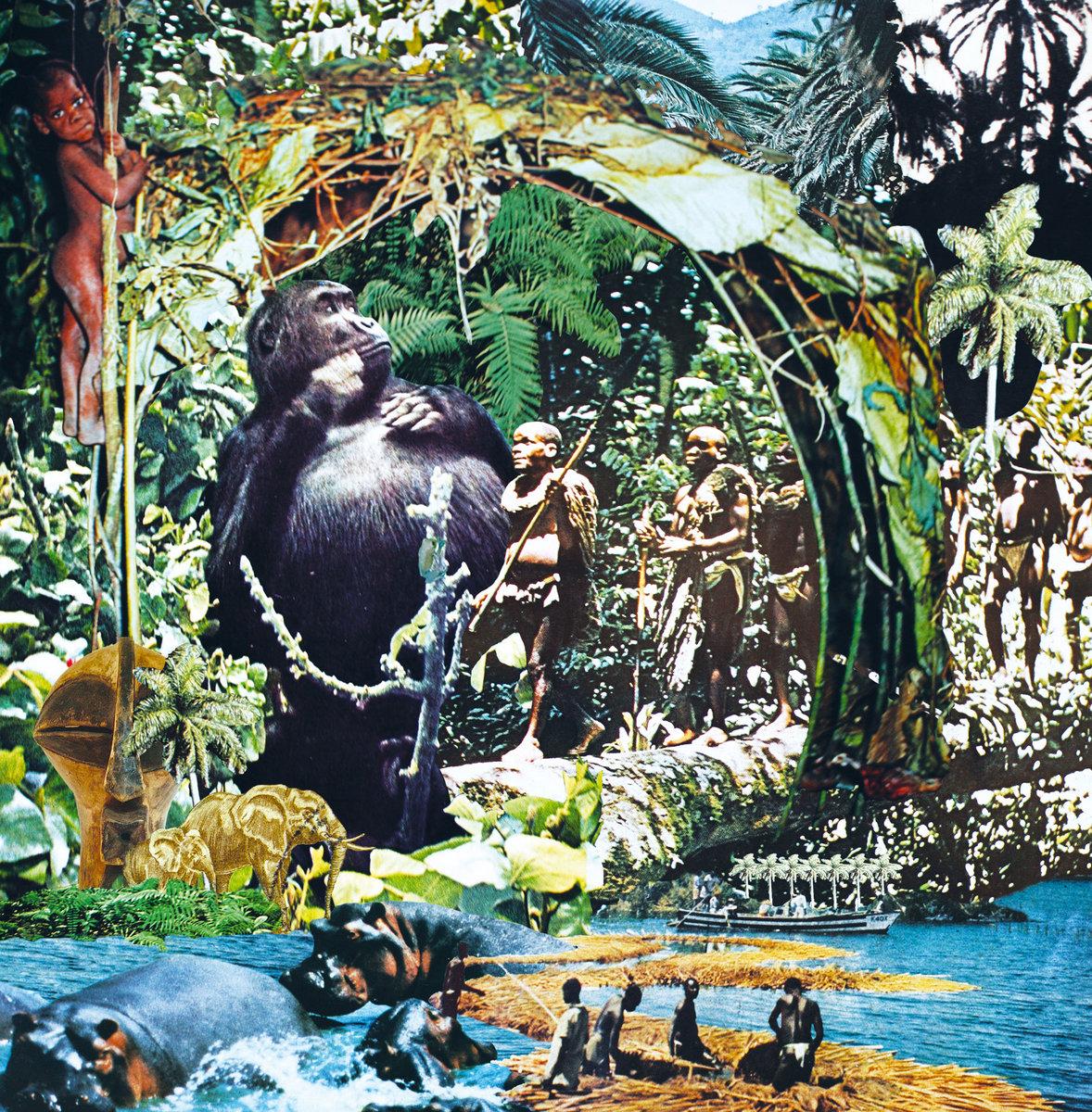 Звуки джунглей mp3 скачать