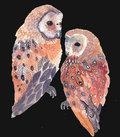 The Night Owls image