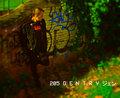 205 G E N T R Y ジェン image