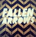 Fallen Arrows image