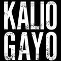 Kalio Gayo image