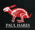 Paul Hares image