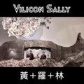 Vilicon Sally image