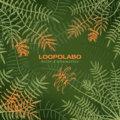 Loopolabo image
