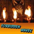 Forbidden Waves image