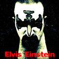 Elvis Einstein image