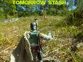 tomorrow stash image