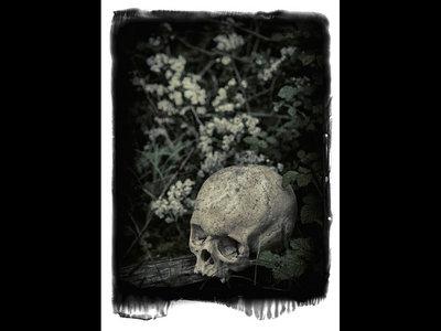 PSYCHIC POISON Skull main photo