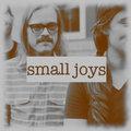 small joys image