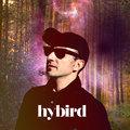 Hybird image