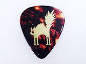 Tortoise Guitar Pick (set of 2) photo