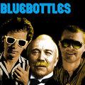Bluebottles image