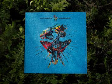 """Limited Edition 12"""" Heavy Black Vinyl main photo"""