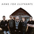 Arms For Elephants image