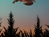 I Want to Believe in The Lobster Starship Poster photo