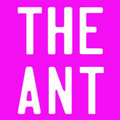 THE ANT image