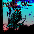 Burning Owl Records image