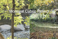 Montreal Cubop Project image
