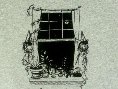 Window T main photo