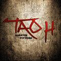 Tao H image