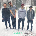 Angus image