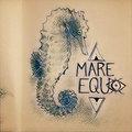Mare Equo image