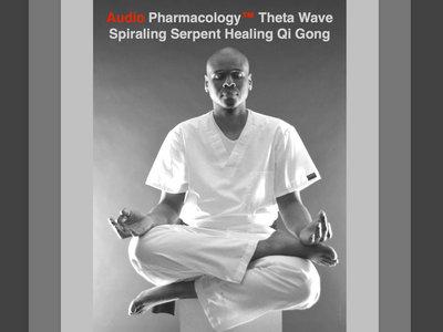 Audio Pharmacology™ Theta Wave 5 Element Healing Qi Gong DVD main photo