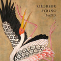 Killdeer String Band image