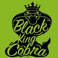 Black King Cobra image