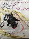 Dark Swallows image