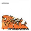 Rhibosome image