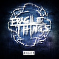 Fragile Things image