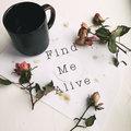 Find Me Alive image