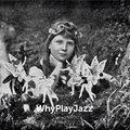 WhyPlayJazz image