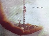 Land Animal CD & T-shirt Bundle (Pre-Order) photo