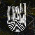 Uchuu Music image