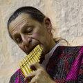Kike Pinto image
