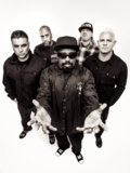 Powerflo image