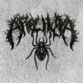 Arachnoia image