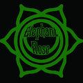Elephant Rose image