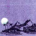 Iguana Moonlight image