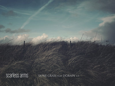'dune grass' postcard main photo