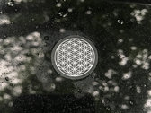 Flower of Life / Abide Serene Stickers photo