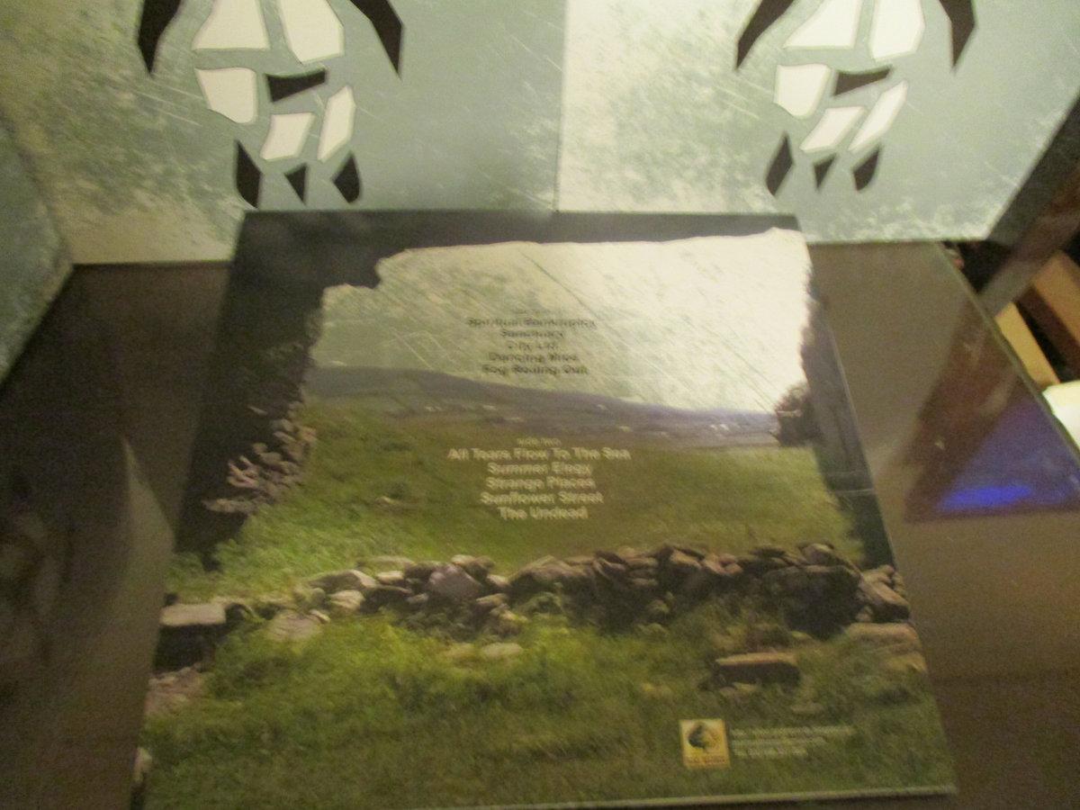 Sunflower Street | G.O.D. RECORDS (Garden Of Dreams)