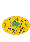 The 38 Turtles image