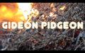 Gideon Pidgeon image