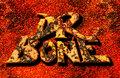 Dr Bone image
