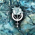 PJ Rose image